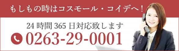 0263-29-0001